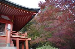 醍醐寺の大講堂