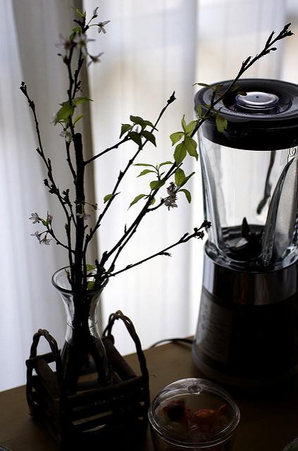 テーブルの上の葉桜