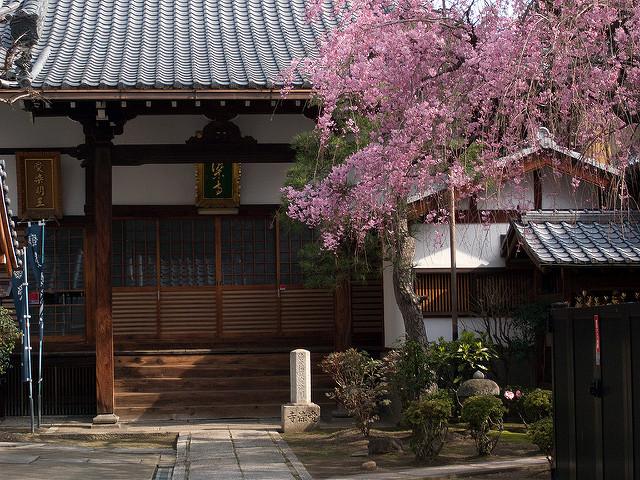 京都 愛染寺